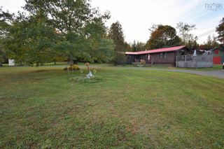 Photo 11: 82 MORGANVILLE Road in Bear River: 401-Digby County Residential for sale (Annapolis Valley)  : MLS®# 202125854