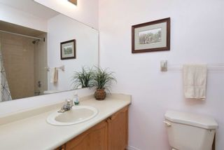 Photo 13: 19 Kingsland Avenue in Mulmur: Rural Mulmur House (Bungalow) for sale : MLS®# X4376322