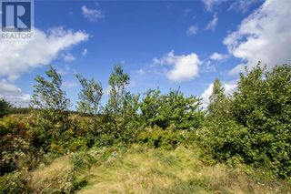Photo 25: 565 Immigrant RD in Cape Tormentine: Vacant Land for sale : MLS®# M137540