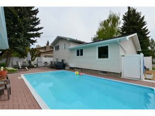 Photo 35: 131 LAKE CRIMSON Close SE in Calgary: Lake Bonavista House for sale : MLS®# C4064324