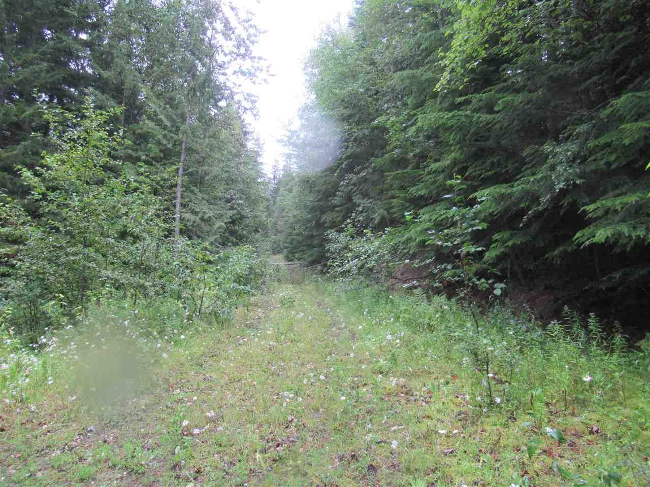 """Photo 17: Photos: LOT 3 HAGGENS POINT Road: Horsefly Land for sale in """"QUESNEL LAKE"""" (Williams Lake (Zone 27))  : MLS®# R2398733"""