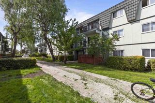 """Photo 21: 360 8151 RYAN Road in Richmond: South Arm Condo for sale in """"MAYFAIR COURT"""" : MLS®# R2580681"""