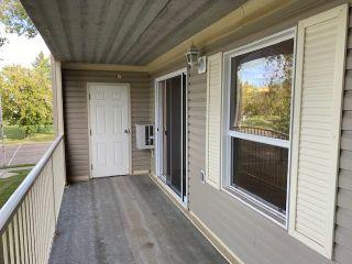 Photo 29: 202 4707 51 Avenue: Wetaskiwin Condo for sale : MLS®# E4261677