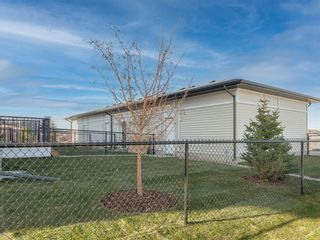 Photo 15: 97 Skyview Parade NE in Calgary: Skyview Ranch Row/Townhouse for sale : MLS®# A1080585