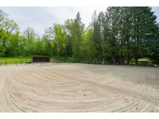 Photo 20: 23864 64 Avenue in Langley: Salmon River House for sale : MLS®# R2356393