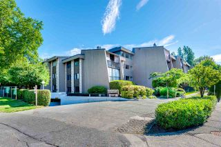 """Photo 20: 226 9101 HORNE Street in Burnaby: Government Road Condo for sale in """"Woodstone Place"""" (Burnaby North)  : MLS®# R2079349"""