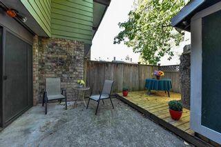 "Photo 13: 245 7451 140 Street in Surrey: East Newton Townhouse for sale in ""Glencoe"" : MLS®# R2127990"