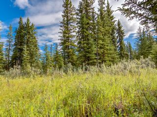 Photo 11: 7 34364 RANGE ROAD 42: Rural Mountain View County Land for sale : MLS®# A1017817