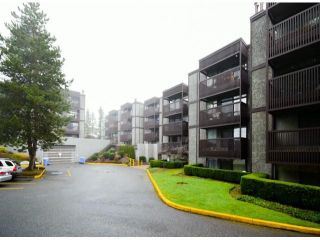 "Photo 12: 404 9672 134TH Street in Surrey: Whalley Condo for sale in ""PARKWOODS"" (North Surrey)  : MLS®# F1429232"