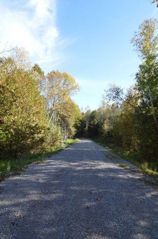 Photo 3: 221 Old Percy Road in Cramahe: Castleton Property for sale : MLS®# X5398941