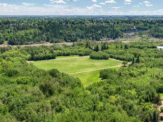 Photo 5: 8516 134 Street in Edmonton: Zone 10 House for sale : MLS®# E4241798