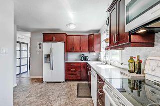 Photo 14: 7 Belleville Avenue: Spruce Grove House for sale : MLS®# E4249541