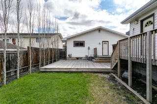 Photo 41: 4763 Rundlewood Drive NE in Calgary: Rundle Detached for sale : MLS®# A1107417