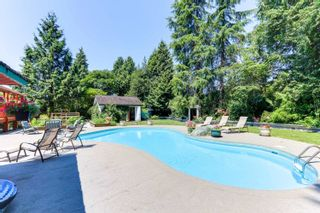 Photo 29: 21437 RIVER Road in Maple Ridge: West Central House for sale : MLS®# R2598288
