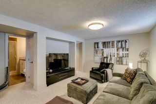 Photo 34: 16 Harley Road SW in Calgary: Haysboro Detached for sale : MLS®# A1092944