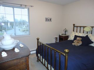 Photo 14: 9168 160A STREET in MAPLE GLEN: House for sale