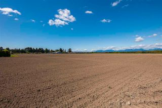 Photo 19: 17731 WESTMINSTER Highway in Richmond: East Richmond Agri-Business for sale : MLS®# C8038030