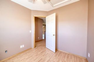 Photo 30: 172 ERIN MEADOW Way SE in Calgary: Erin Woods Detached for sale : MLS®# A1028932