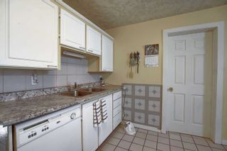 Photo 13: 11833 94 Street in Edmonton: Zone 05 House for sale : MLS®# E4249546