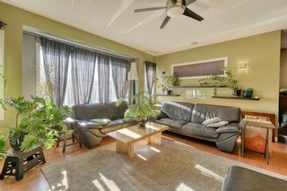 Photo 19: 205 Cranfield Manor SE in Calgary: Cranston Detached for sale : MLS®# A1144624