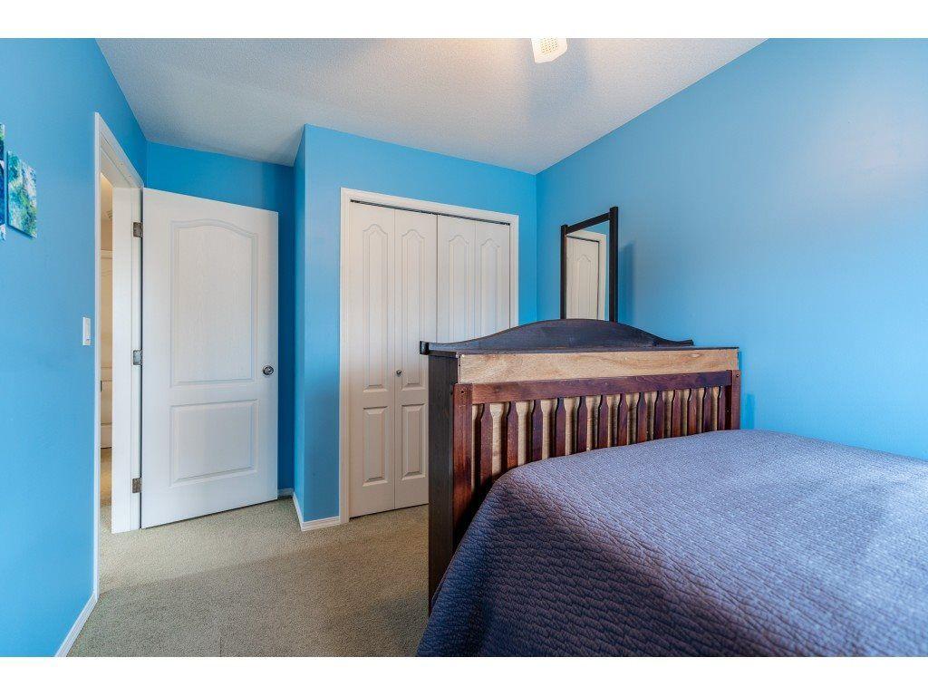 "Photo 24: Photos: 11617 CREEKSIDE Street in Maple Ridge: Cottonwood MR House for sale in ""Cottonwood"" : MLS®# R2554913"