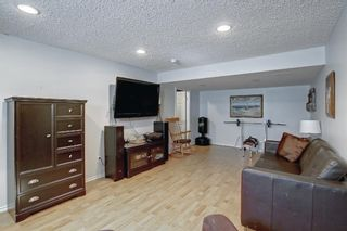 Photo 32: 690 Coventry Drive NE in Calgary: Coventry Hills Detached for sale : MLS®# A1144228