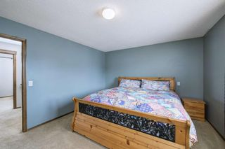 Photo 23: 234 ELGIN View SE in Calgary: McKenzie Towne Detached for sale : MLS®# A1035029