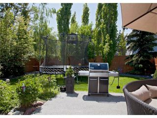 Photo 38: 67 CHAPMAN Way SE in Calgary: Chaparral House for sale : MLS®# C4065212