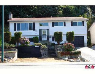 "Photo 1: 35114 MCKEE Road in Abbotsford: Abbotsford East House for sale in ""MCMILLAN"" : MLS®# F2723645"