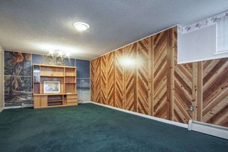Photo 23: 254 WARRICK Street in Coquitlam: Cape Horn House for sale : MLS®# R2479071