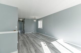 Photo 6: 23 Erin Meadows Court SE in Calgary: Erin Woods Detached for sale : MLS®# A1146245