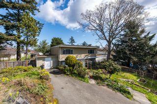Photo 25: 260 Balfour Pl in : Vi Burnside House for sale (Victoria)  : MLS®# 870925