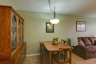 Photo 7: 2 Bedroom Apartment for Sale in Maple Ridge