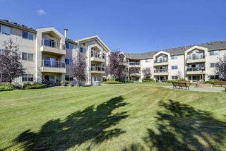 Photo 7: 103 6623 172 Street in Edmonton: Zone 20 Condo for sale : MLS®# E4224265