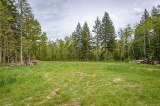 Photo 44: 2391 Humphrey Rd in : CV Merville Black Creek House for sale (Comox Valley)  : MLS®# 875183