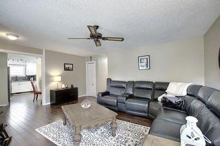Photo 13: 36 MCKENNA RD SE in Calgary: McKenzie Lake Detached for sale : MLS®# C4300100