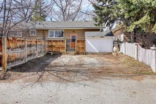 Photo 43: 800 Acadia Drive SE in Calgary: Maple Ridge Detached for sale : MLS®# A1091895