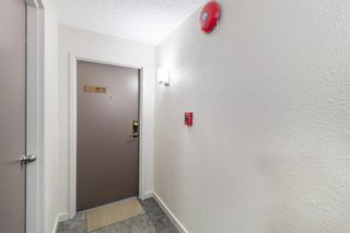 Photo 3: 801 1334 13 Avenue SW in Calgary: Beltline Apartment for sale : MLS®# A1137068