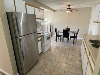 Photo 7: 204 10035 164 Street in Edmonton: Zone 22 Condo for sale : MLS®# E4237771