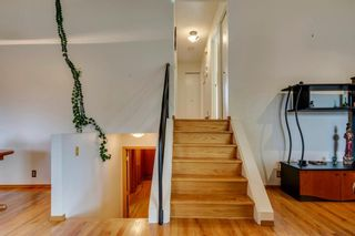 Photo 6: 230 EDGEDALE Place NW in Calgary: Edgemont Semi Detached for sale : MLS®# A1036042