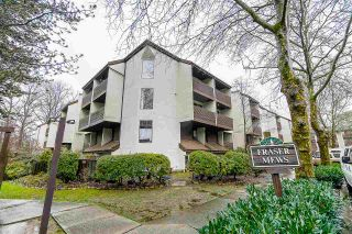 Photo 20: 308 385 GINGER Drive in New Westminster: Fraserview NW Condo for sale : MLS®# R2537367