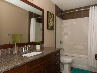 Photo 19: 5119 2 AV SW in : Zone 53 House for sale (Edmonton)  : MLS®# E3407228