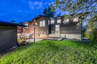 Photo 42: 18 Meadowlark Crescent SW in Calgary: Meadowlark Park Detached for sale : MLS®# A1113904