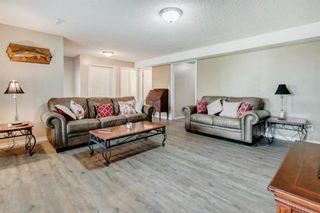Photo 28: 163 Riverview Circle: Cochrane Detached for sale : MLS®# A1131932