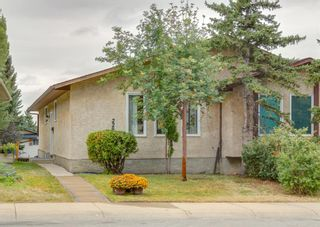 Photo 38: 228 Berwick Drive NW in Calgary: Beddington Heights Semi Detached for sale : MLS®# A1137889