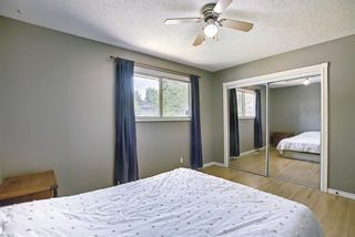 Photo 17: 10443 Wapiti Drive SE in Calgary: Willow Park Detached for sale : MLS®# A1128951