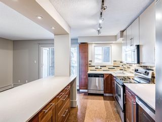 Photo 5: 202 1603 26 Avenue SW in Calgary: South Calgary Apartment for sale : MLS®# A1100163