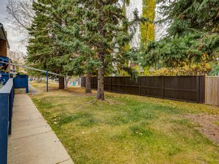 Photo 47: 16 5315 53 Avenue NW in Calgary: Varsity Row/Townhouse for sale : MLS®# A1041162