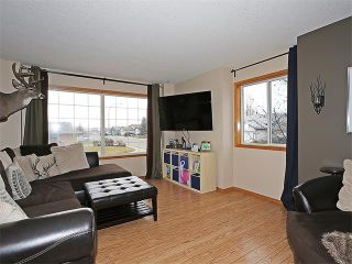 Photo 4: 191 STRATHAVEN Crescent: Strathmore House for sale : MLS®# C4088087
