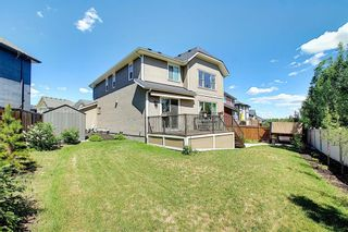 Photo 49: 143 STONEMERE Green: Chestermere Detached for sale : MLS®# A1123634